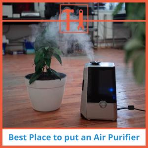 proHVACinfo | Best Place to Put an Air Purifier